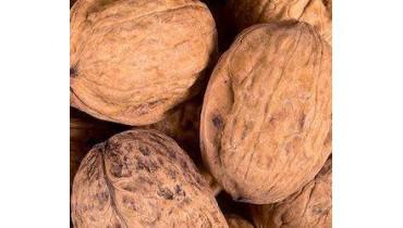 Acht redenen waarom walnoten gezond zijn!