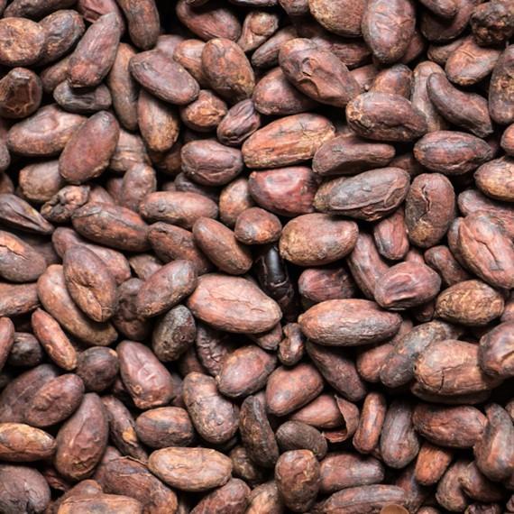 Cacaobonen biologisch