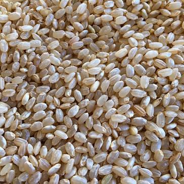 Volkoren rijst rond bio